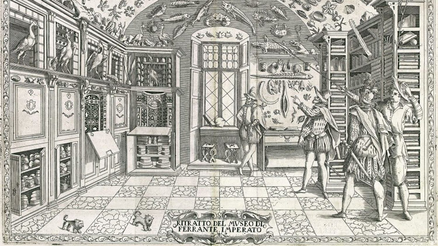 Engraving from Ferrante Imperto's Dell'Historia Naturale (Naples, 1599)