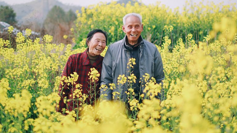 a man and a woman in their 80s laugh in a field of flowers