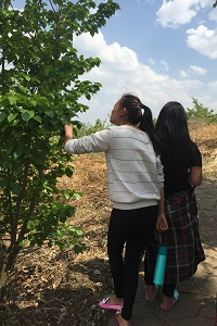 Girls with tree