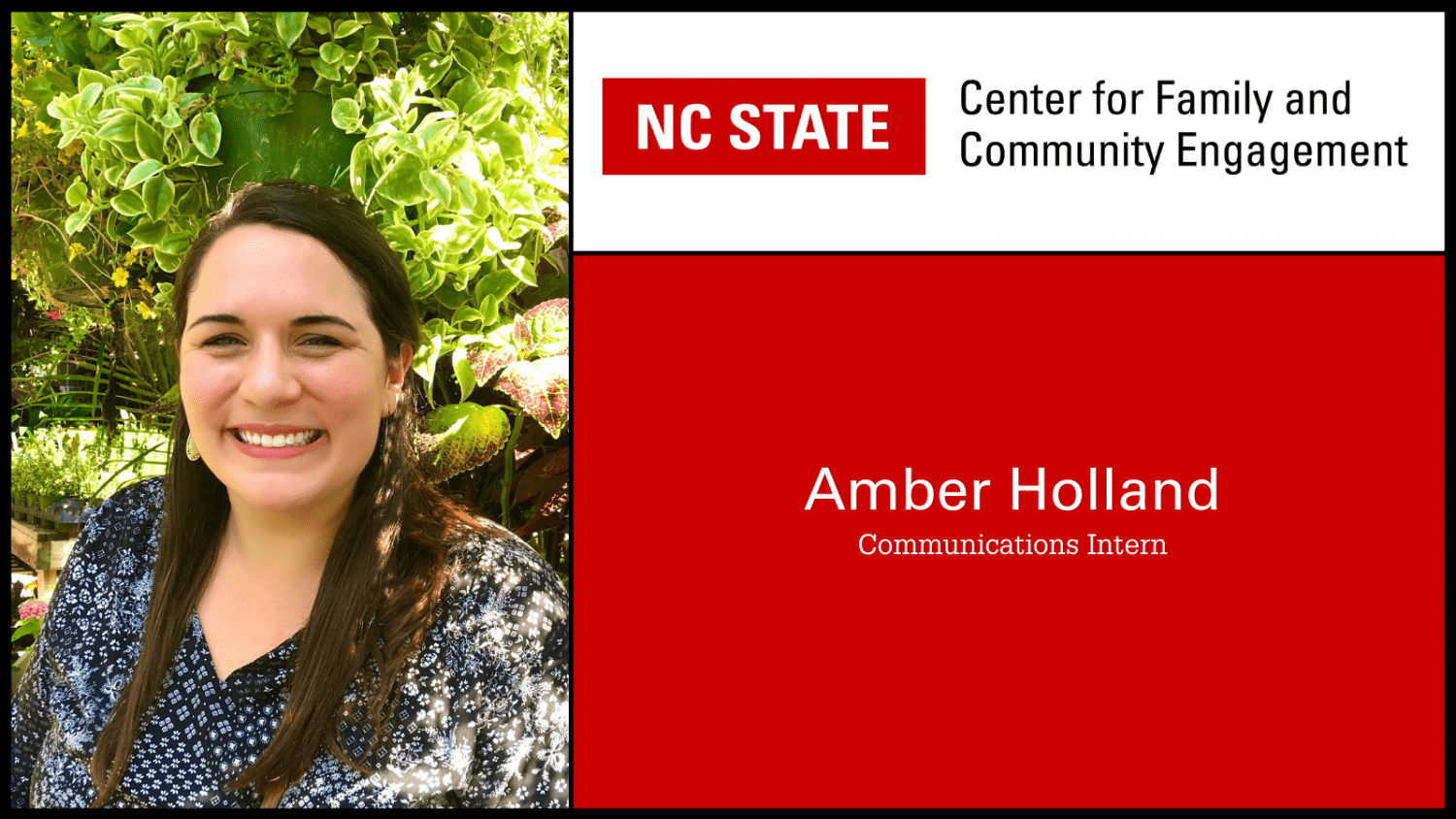 Meet Us Mondays: Amber Holland