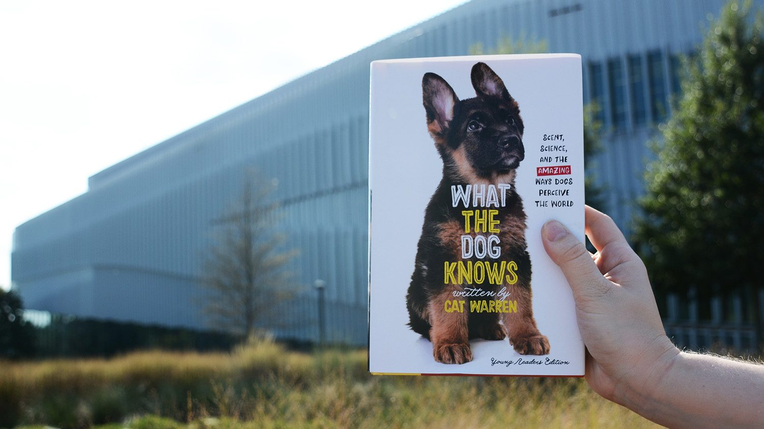 "cover photo of ""What the Dog Knows"" young readers edition"