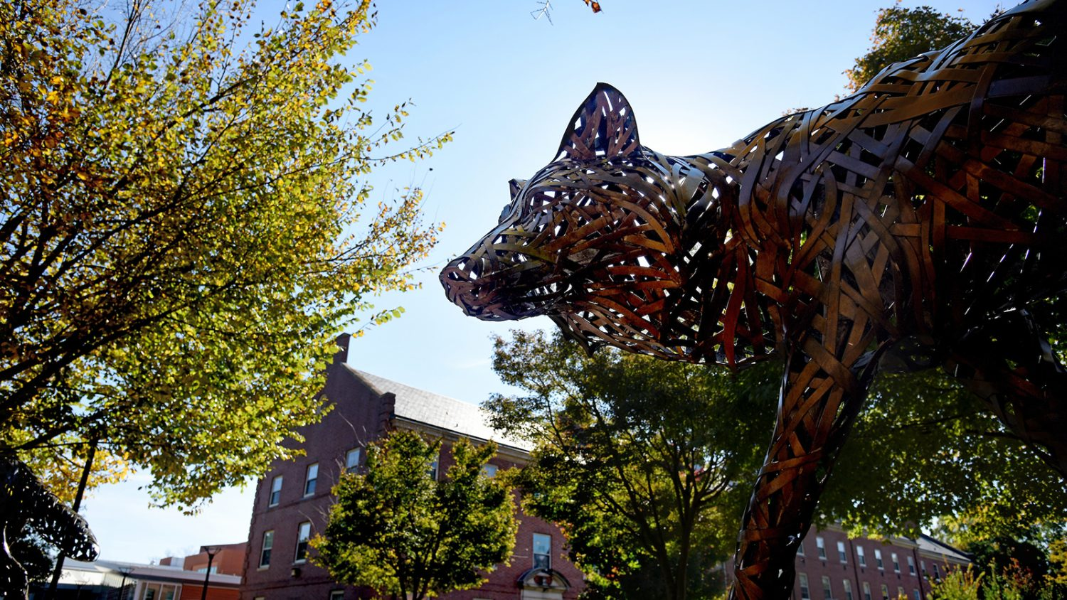 nc state wolf statue