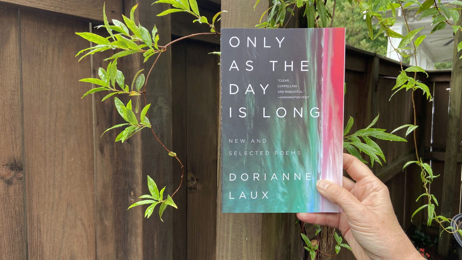 "cover of ""Only As the Day is Long: New and Selected Poems"""