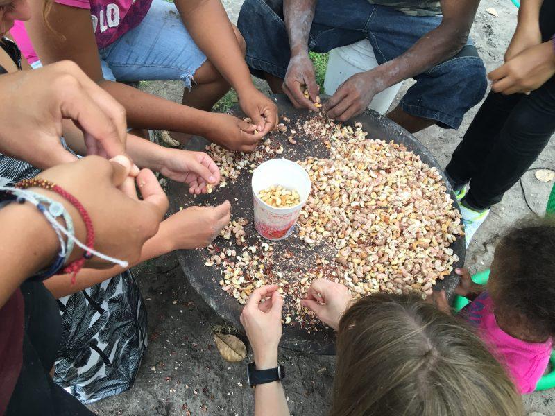 Processing cashews