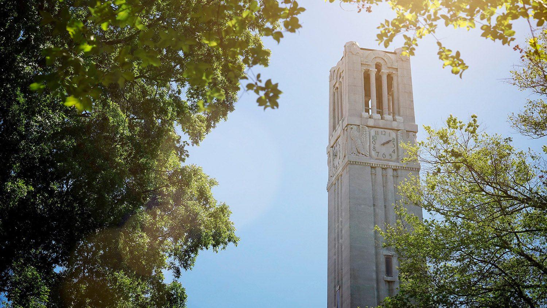 belltower behind trees
